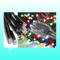Lyyt 155.409  LED Light String